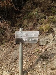 写真_3_2